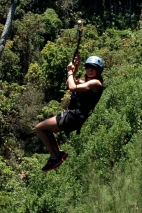 Zip-lining in the Jungle